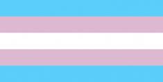 Megalakult a TransVanilla Transznemű Egyesület