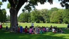 Labrisz Piknik