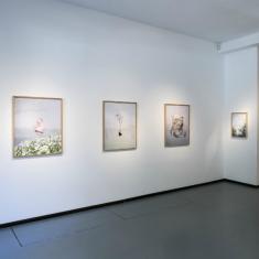 Kiállítás látogatás